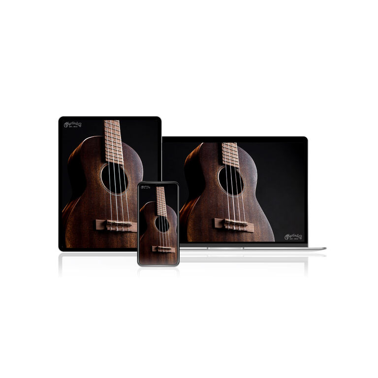 Ukulele pictures on a computer screen