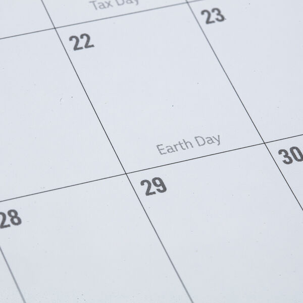 2021 Martin Calendar image number 2